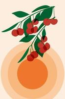 Cherry berries are translucent in the sun. vector