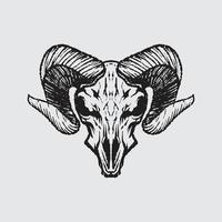 Goat skeleton drawing vector