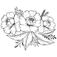 Peony, rose, leaves and berry sketch. vector