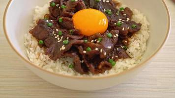 Rice with Soy Flavored Pork and Egg in Japanese Style video