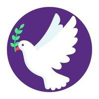 Dove Peace bird vector