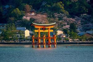 The floating gate of Itsukushima Shrine photo