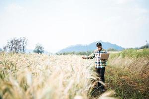 Granjero inteligente comprobando la granja de cebada con ordenador portátil foto