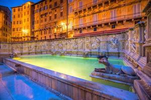 Fonte gaia, Piazza del Campo, in Siena photo