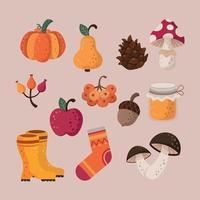 Set of Autumn Icon vector