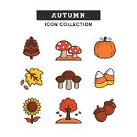 Variety of Plants Nuts and Trees on Autumn vector