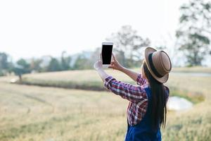 Smart woman farmer looking at barley field with phone photo