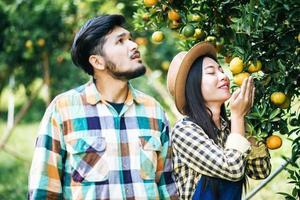 Farming couple picks orange fruits photo