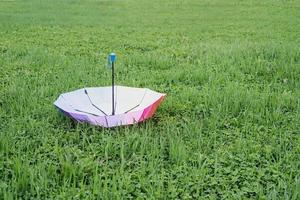 paraguas de colores en la hierba foto