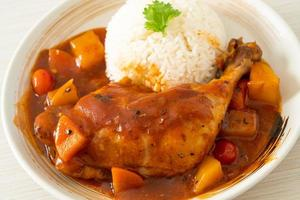 Homemade chicken stew with tomatoes, onions, carrot and potatoes on plate with rice photo
