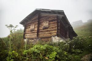 casa de las tierras altas, niebla y vegetación, rize - turquía foto