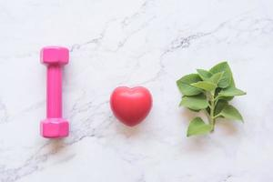 herbal plant concept with heart and gym dumbbell photo