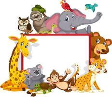 Empty banner with various wild animals vector