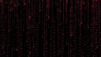 código binario sobre fondo negro video