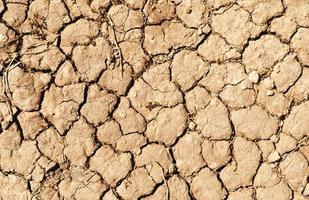 Proyecto de fondo de textura de suelo agrietado foto