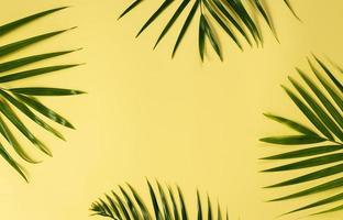 green leaves of palm tree on yellow background for mockup photo