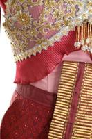 Thai Silk Dressed photo