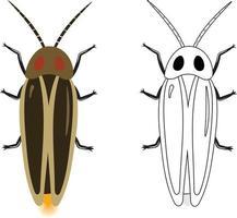 Firefly or Lampyridae Vector Illustration