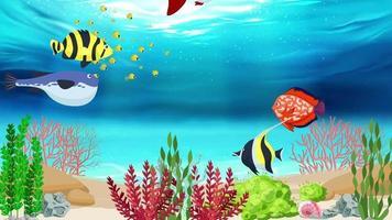 plantas marinhas e peixes sob o oceano azul video