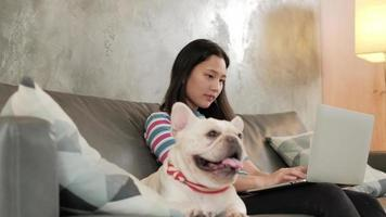 Casual freelance Asian cute woman working from home with her dog. video