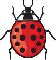 Ladybug Insect Icon vector