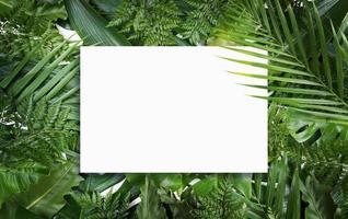 Fluorescent summer background, abstract summer frame,banner photo