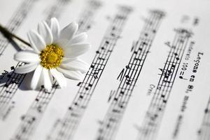 Flower Flora Daisy and Music Notes Sheets photo