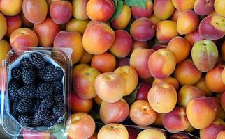 Organic Fruit Mulberry and Apricot photo