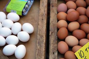 alimentos proteína orgánica pollo huevos crudos foto
