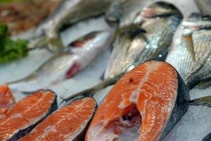 Raw Food Salmon Fish on Ice photo