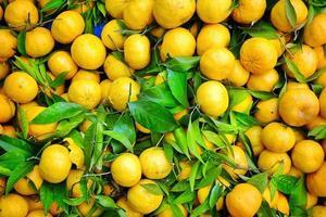 mandarina de fruta fresca y jugosa foto
