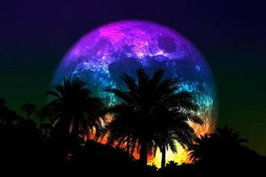Super flower colorful moon with silhouette palm tree on the night sky photo