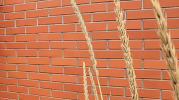 mampostería de pared y piso. varias texturas de piedra. foto
