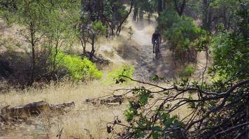homme faisant du vélo de montagne dans la nature video