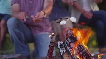 Closeup of Family toasting marshmallows on camp fire video