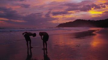 två pojkar springer på stranden i solnedgången, costa rica video
