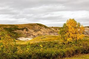 Fall in the badlands at Midland Provincial Park, Alberta, Canada photo