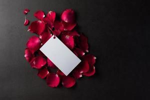 rosa roja con tarjeta blanca en blanco. foto