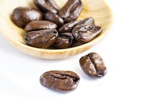 coffe bean on white background photo