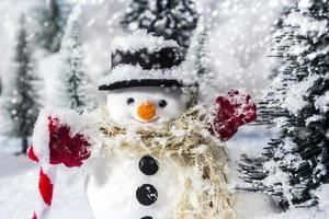 Snowman in pine woods during winter for christmas photo
