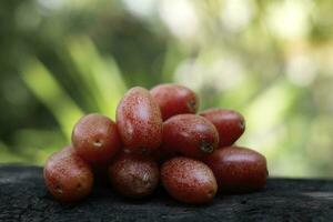 Ripe Elaeagnus latifolia fruit on wood blurred background photo