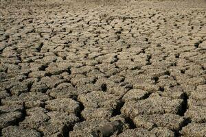 suelo agrietado y seco en zonas áridas paisaje foto