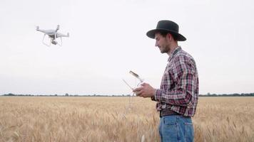 Worker with Drone in Summer Wheat Fields video