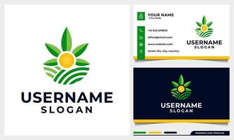 Agriculture with Cannabis leaf and sun concept logo design vector