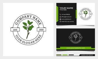 Simple Beauty leaf logo design, can use for beauty salon, spa, yoga vector
