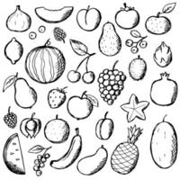 Fruits Doodle Hand Draw set. Vector food elements collection