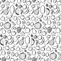 Fruits Doodle Hand Draw seamless pattern vector