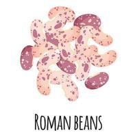 frijoles romanos para el diseño, la etiqueta y el embalaje del mercado del agricultor de la plantilla. vector