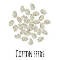 semillas de algodón para el diseño, la etiqueta y el embalaje del mercado del agricultor de la plantilla. vector