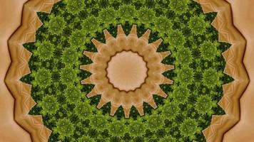 Élément kaléidoscopique vibrant brun en terre et vert forêt video